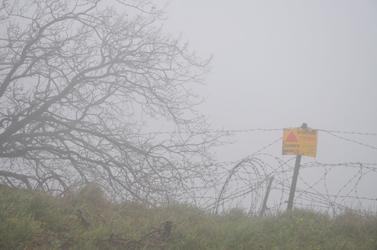 רמת-הגולן, אתמול (צילום: שי לוי)
