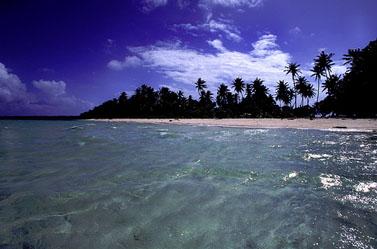 מאג'ורו, איי מרשל (צילום: סטפן לינס, רשיון cc-by)