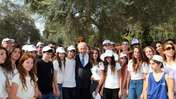 הנשיא שמעון פרס במסיק זיתים, אתמול (צילום: יואב ארי דודקביץ')