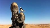 """חייל גולני ברגע של מרגוע (צילום: דובר צה""""ל, רישיון CC BY-NC-SA 2.0)"""