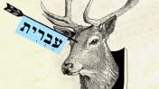 הצבי, אליעזר בן יהודה