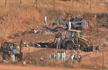הכנות לעסקה: מוציאים את גופות חללי האויב מבית-הקברות במחנה עמיעד (צילום: פלאש 90)