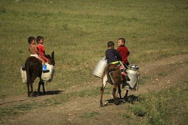 ילדים על הר גרז'ה במזרח גיאורגיה (צילום: דורון הורוביץ)