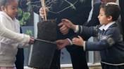 בנימין נתניהו, ראש ממשלת ישראל, נוטע עץ בכפר עציון (צילום: קובי גדעון)