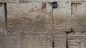 הכותל המערבי, 29.5.13 (צילום: ניל בדש)