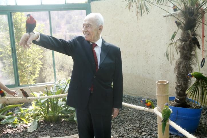 נשיא המדינה שמעון פרס, אתמול בגן חיות בירושלים (צילום: מרים אלסטר)