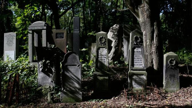 בית קברות יהודי בוורשה, פולין (צילום: מרים אלסטר)