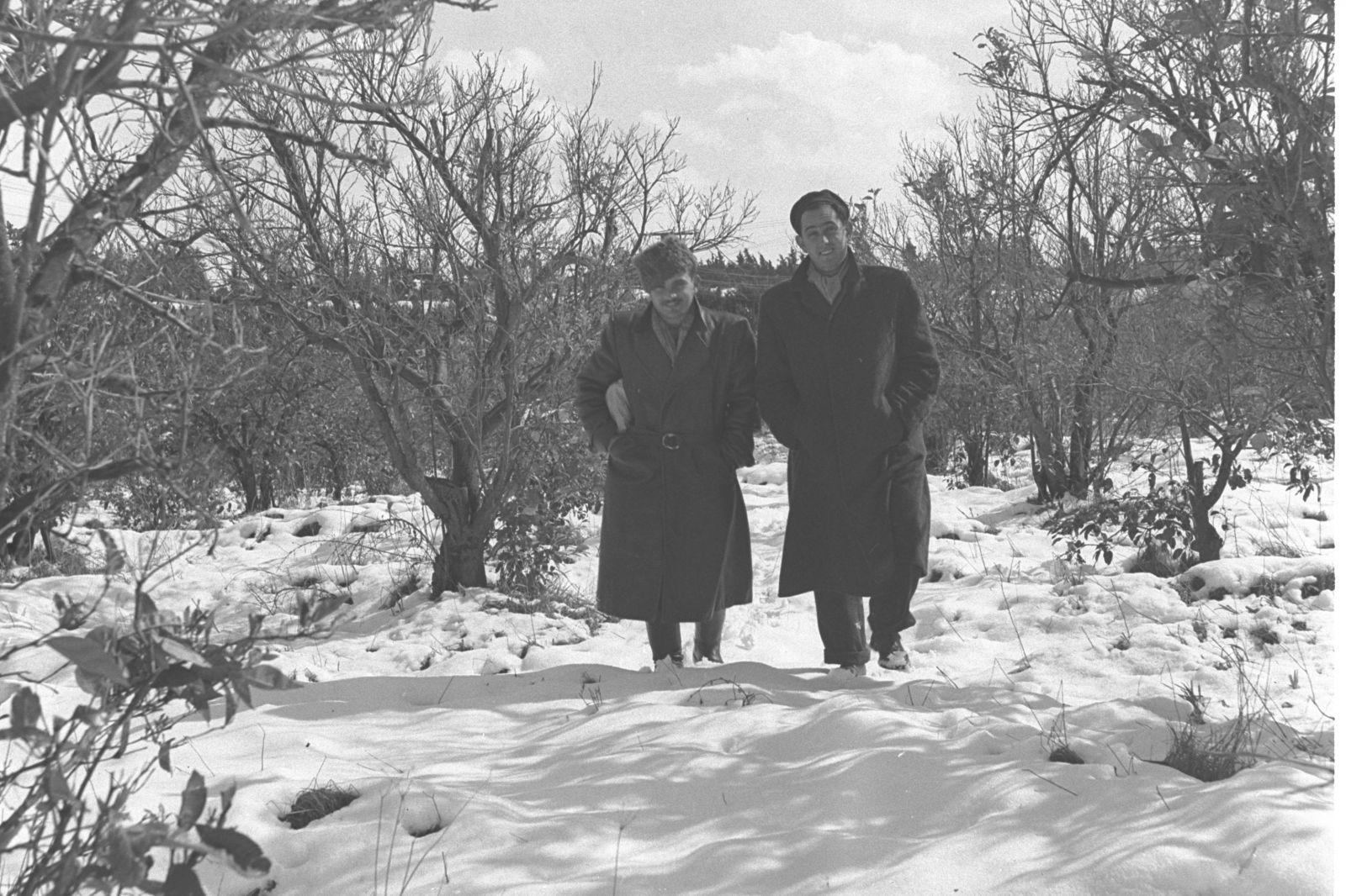 """בפאתי תל-אביב, 6.2.1950 (צילום: דוד אלדן, לע""""מ)"""