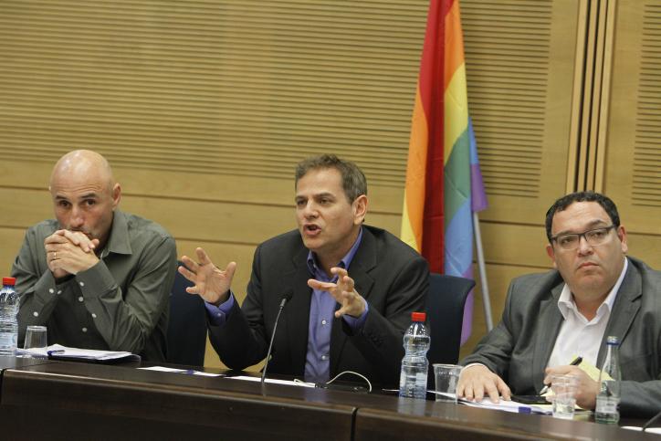 חברי-כנסת משתתפים בישיבה מיוחדת שעניינה תמיכה בהומואים ובלסביות. הכנסת, 3.6.13 (צילום: מרים אלסטר)
