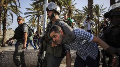 שוטר עוצר פלסטיני במהלך הפגנה לזכר יום האדמה, 29.3.14 (צילום: סלימאן חאדר)