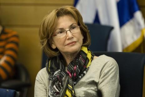 שרת הבריאות, יעל גרמן, בדיון של ועדת העבודה, הרווחה והבריאות של הכנסת. 23.12.13 (צילום: פלאש 90)