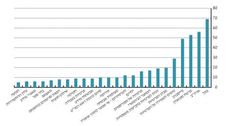 גרף 1 – נושאי העיסוק המרכזיים בכתבות העוסקות בפרטיות שהתפרסמו בעיתונות הכתובה בישראל בשנת 2013