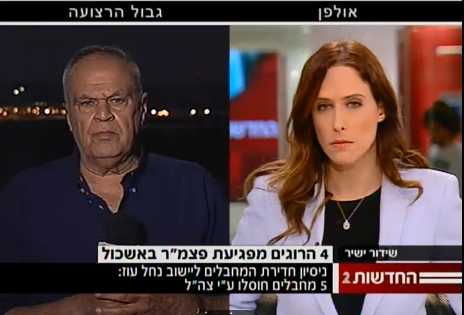 מהדורת החדשות המרכזית של ערוץ 2, 29.7.14 (צילום מסך)