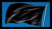 (צילום דגל שחור: שאטרסטוק)