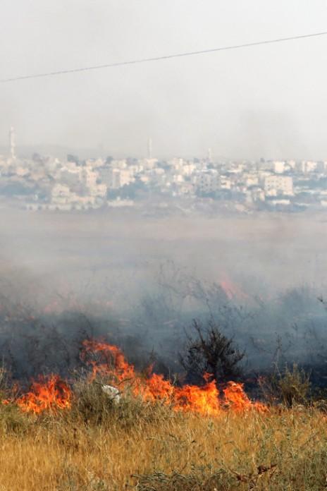 שריפה סמוך לרהט, 27.5.15 (צילום: פלאש 90)