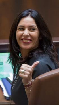 שרת התרבות והספורט מירי רגב במליאת הכנסת (צילום: יונתן זינדל)