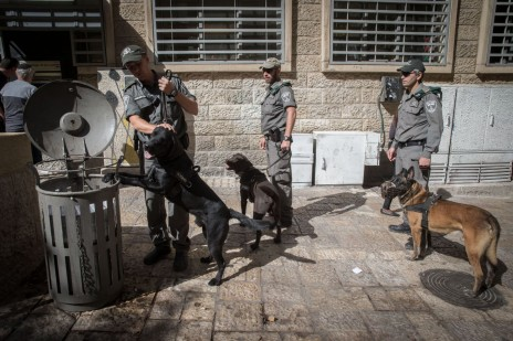 ירושלים, מדרחוב בן-יהודה, אתמול (צילום: נתי שוחט)