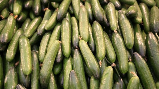 מלפפונים בשוק (צילום: נתי שוחט)