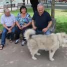 ראש הממשלה בנימין נתניהו והכלבה קאיה פוגשים בעוברי אורח בירושלים, 13.5.16 (צילום מסך)