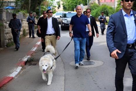 תמונה 1: ראש הממשלה בנימין נתניהו והכלבה קאיה צועדים במרכז הכביש עם כוחות אבטחה, 13.5.16 (צילום: צלם לא ידוע, פורסם בעמוד הפייסבוק של ראש הממשלה ללא קרדיט)