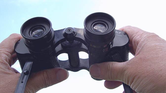 משקפת (צילום: W.J.Pilsak, רשיון CC BY-SA 3.0)