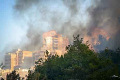 שריפת ענק בחיפה, 24.11.16 (צילום: מאיר וקנין)
