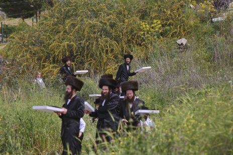 חרדים נושאים מצות בעיר בית-שמש, 10.4.17 (צילום: יעקב לדרמן)