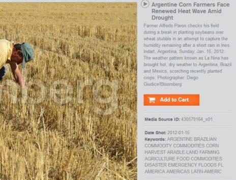 """תיאור התמונה באתר """"בלומברג"""" (צילום מסך)"""