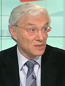 פרופ' קמיל פוקס (צילום מסך)
