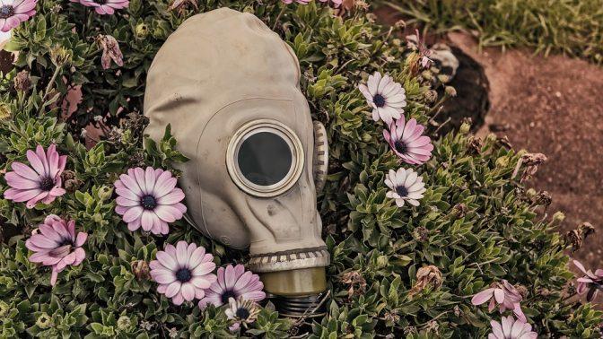 מסיכת גז (צילום: ג'ושוע וילסון, רישיון C00)