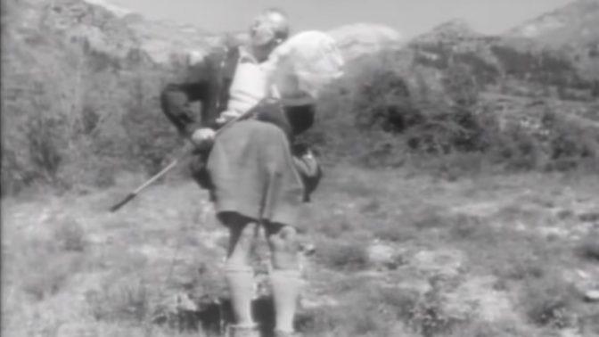 ולדימיר נבוקוב (צילום מסך)