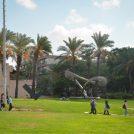 היום הראשון ללימודים באוניברסיטת תל-אביב, 14.10.2018 (צילום: פלאש 90)