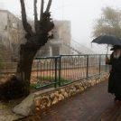 חרדי נושא מטריה בצפת, דצמבר 2018 (צילום: דוד כהן)