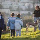 עמק הצבאים בירושלים (צילום: הדס פרוש)