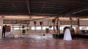 זומו, המוזיאון הנודד (צילום מסך)