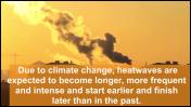 שקופת מתוך סרטון של השירות המטאורולוגי העולמי המתייחס לגלי החום הקיצוניים של קיץ 2019 באירופה (צילום מסך)