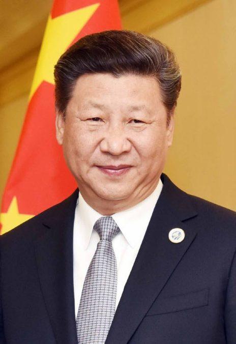 שליט סין, שי ג'ינפינג (צילום: ממשלת הודו)