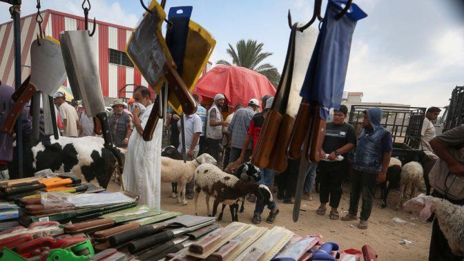סכינים ובעלי חיים מוצגים למכירה לרגל חג הקורבן במחנה הפליטים אל-בורייג'. רצועת עזה, 8.8.2019 (צילום: עבד רחים חטיב)