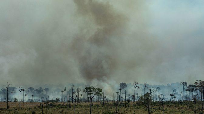 שריפות יער באמזונס, ברזיל 2019 (צילום: ויקטור מורייאמה, גרינפיס)