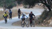 רוכבי אופניים ביער בן-שמן (צילום ארכיון: נתי שוחט)