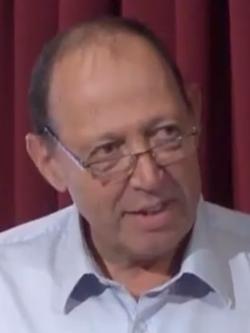 """שלמה דולברג, מנכ""""ל מרכז השלטון המקומי (צילום מסך)"""