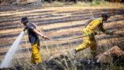 כבאים מכבים שריפת יער, 16.5.20 (צילום: יונתן זינדל)