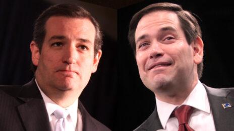 הסנאטורים האמריקאים מרקו רוביו (מימין) וטד קרוז (צילומים: ג'ייג' סקידמור)