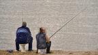 מסע הדיג של נתניהו ואלוביץ' (אילוסטרציה)