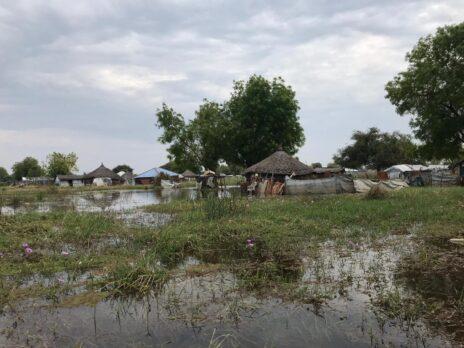 בתים הרוסים ושטחים חקלאיים מוצפים בעיירה בור, במדינת ג׳ונגליי בדרום סודן (צילום: ליאת בירון)