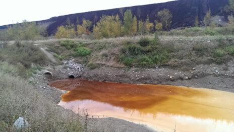 מקור מים מזוהם ליד אתר פצלי שמן באסטוניה (צילום מסך)