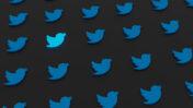 ציפורים טוויטר