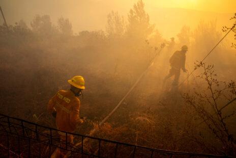 כבאים נלחמים בשריפת הענק בהרי ירושלים, גבעת יערים, 16.8.21 (צילום: אוליביה פיטוסי)