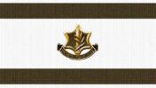 """דגל ישראל עם סמל צה""""ל"""